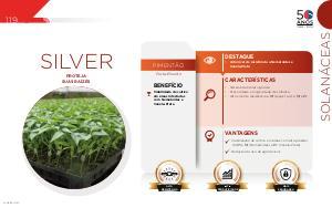Silver - Solanáceas