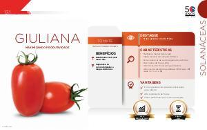 Giuliana - Solanáceas