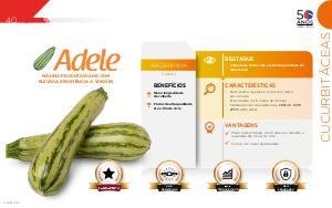 Adele - Cucurbitáceas
