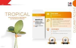Tropical - Cucurbitáceas