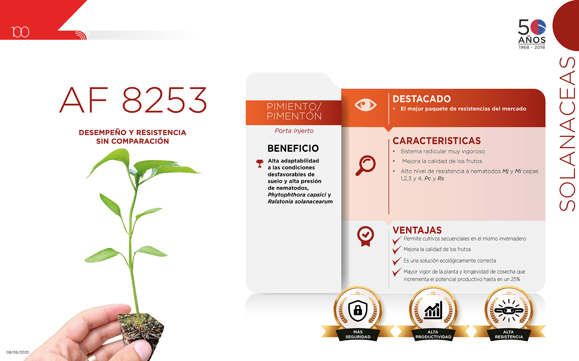 AF 8253 - Solanaceas