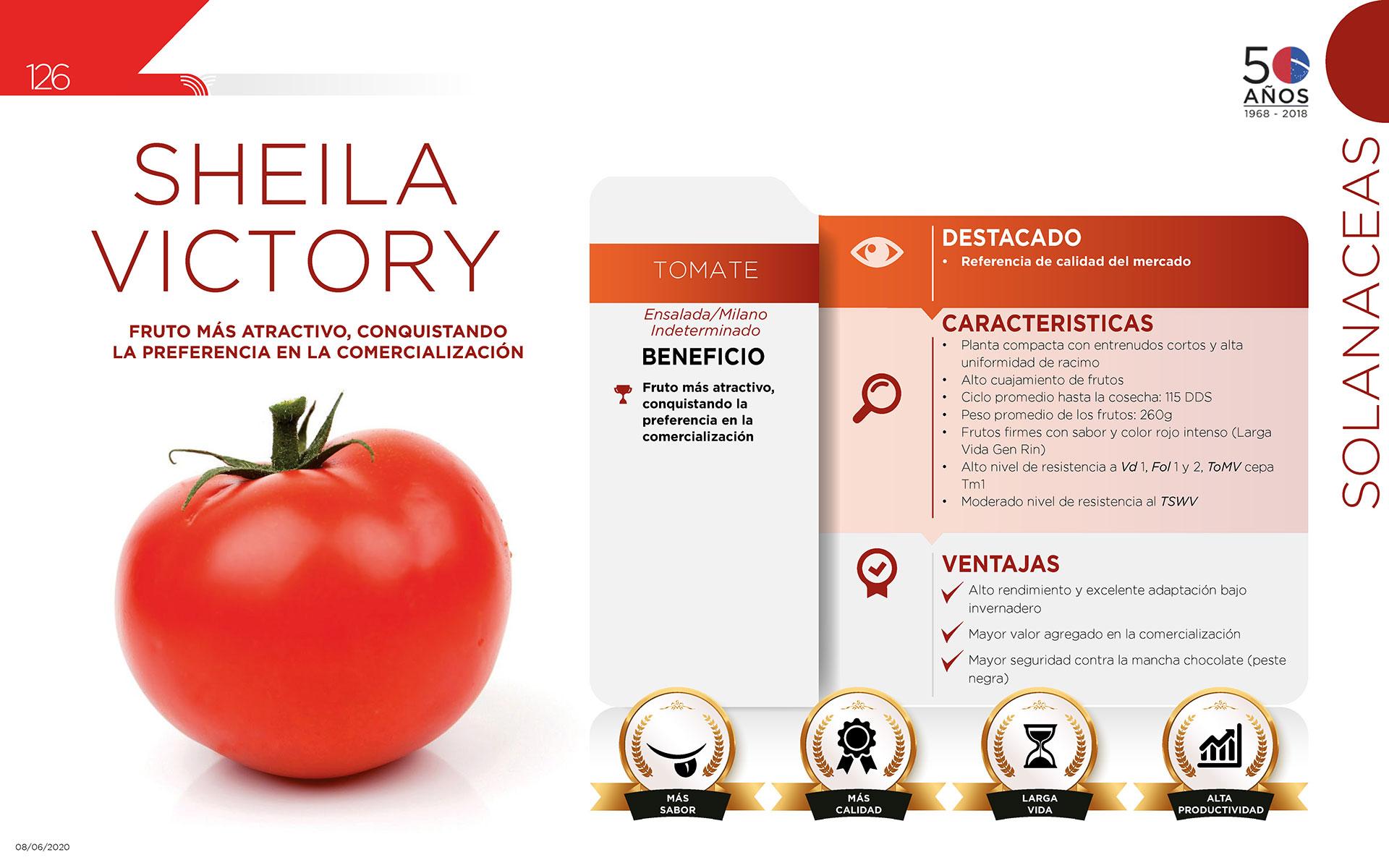 Sheila Victory - Solanaceas