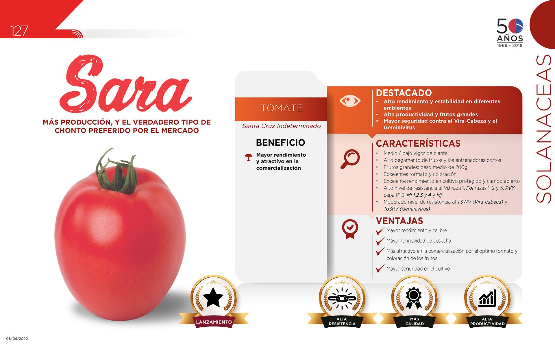 Sara - Solanaceas