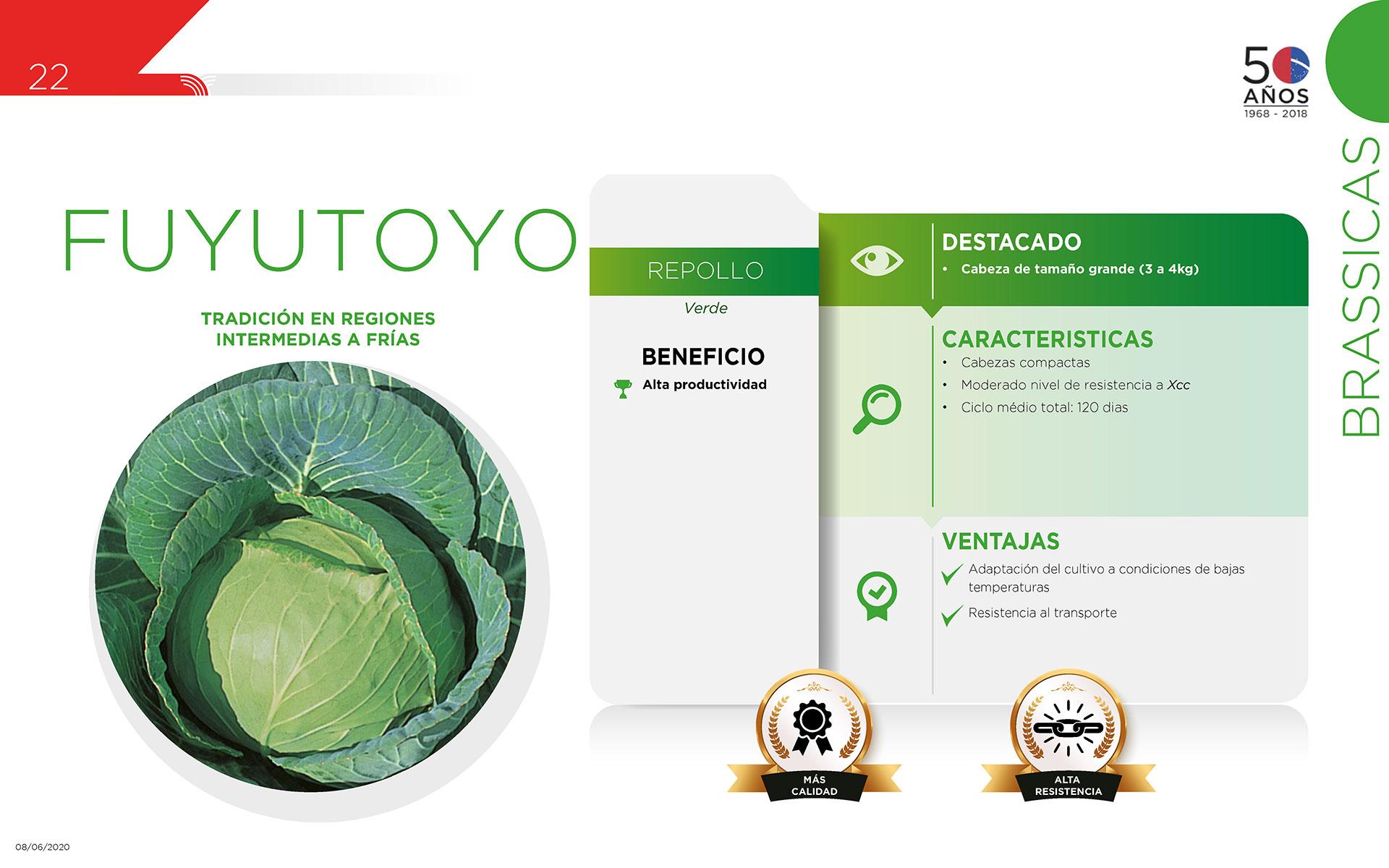 Fuyutoyo - Brassicas