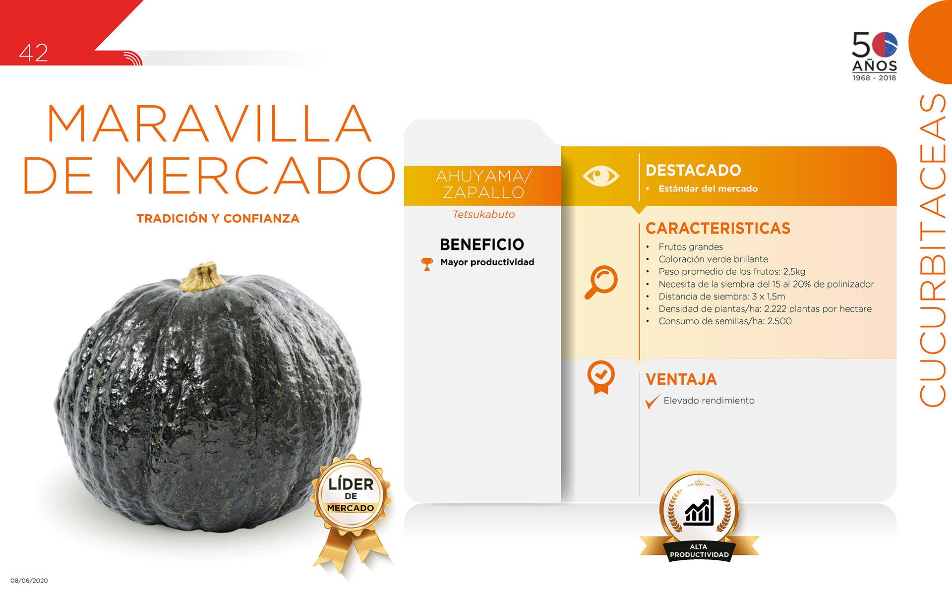 Maravilla de Mercado - Cucurbitaceas