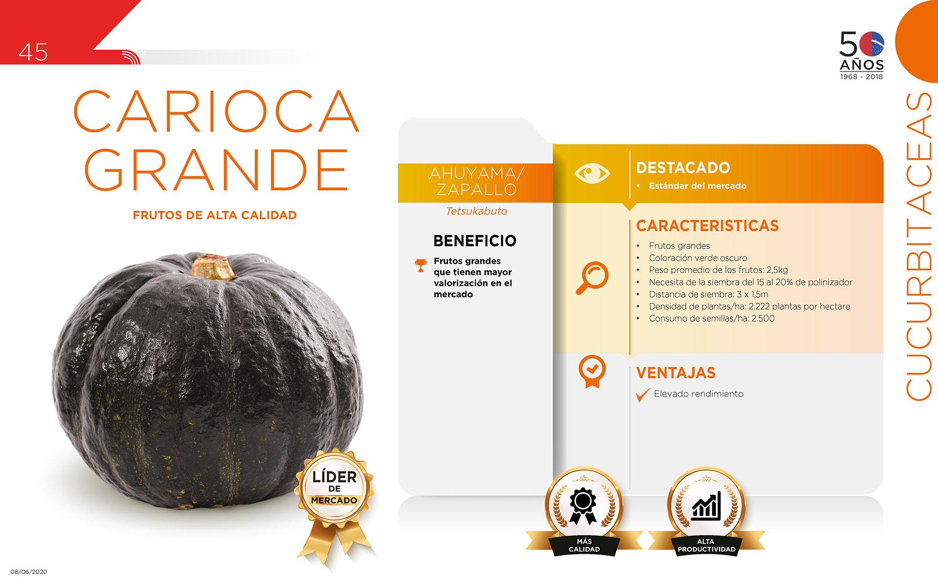 Carioca Grande - Cucurbitaceas