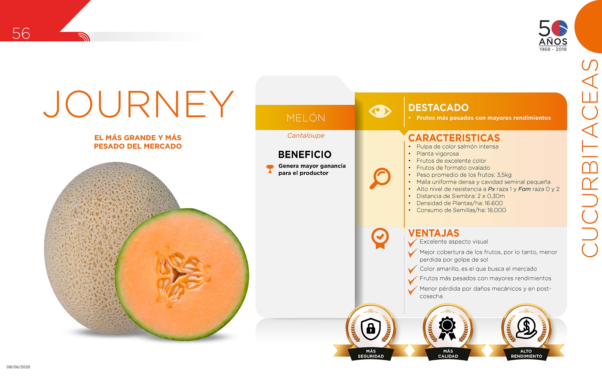 Journey - Cucurbitaceas