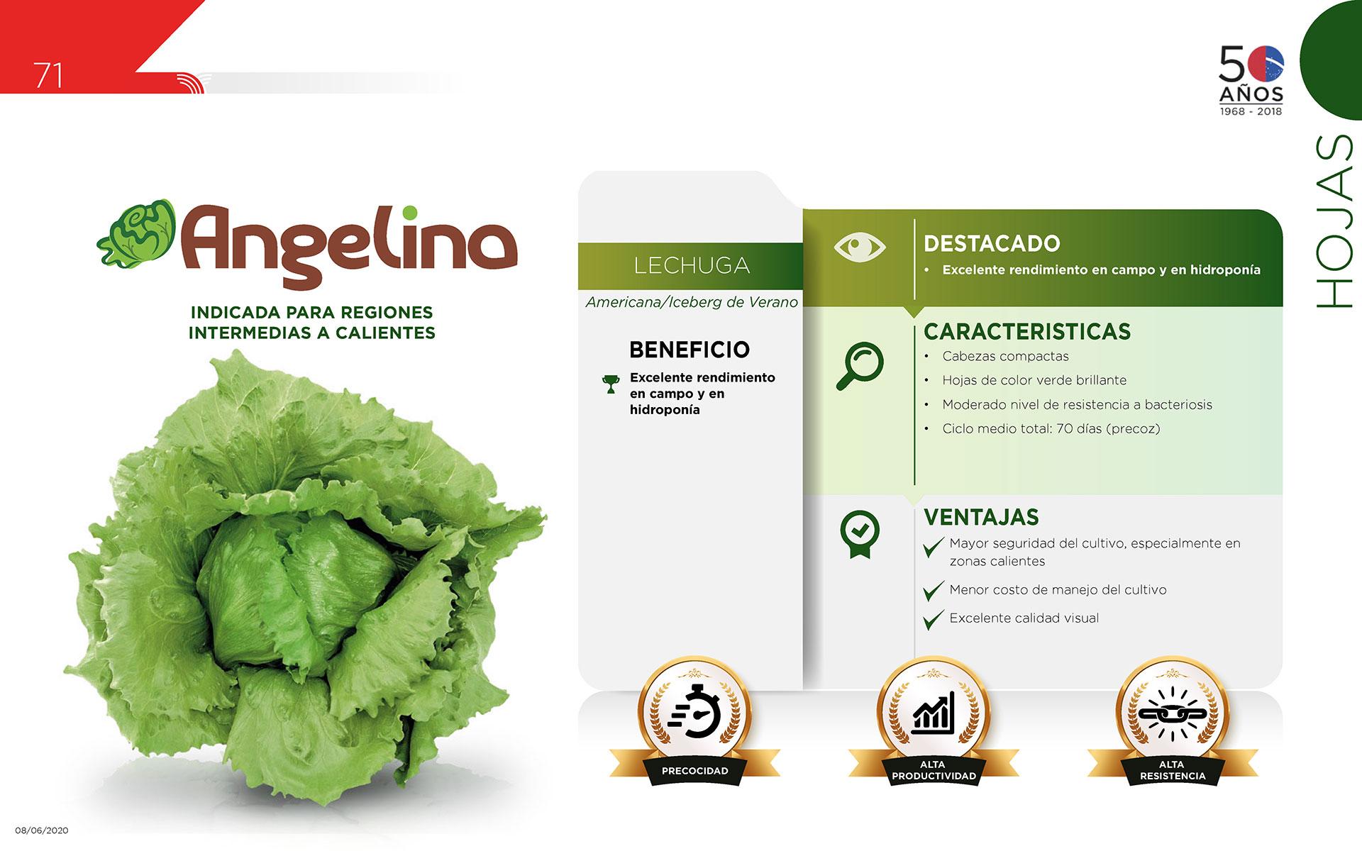 Angelina - Hojas