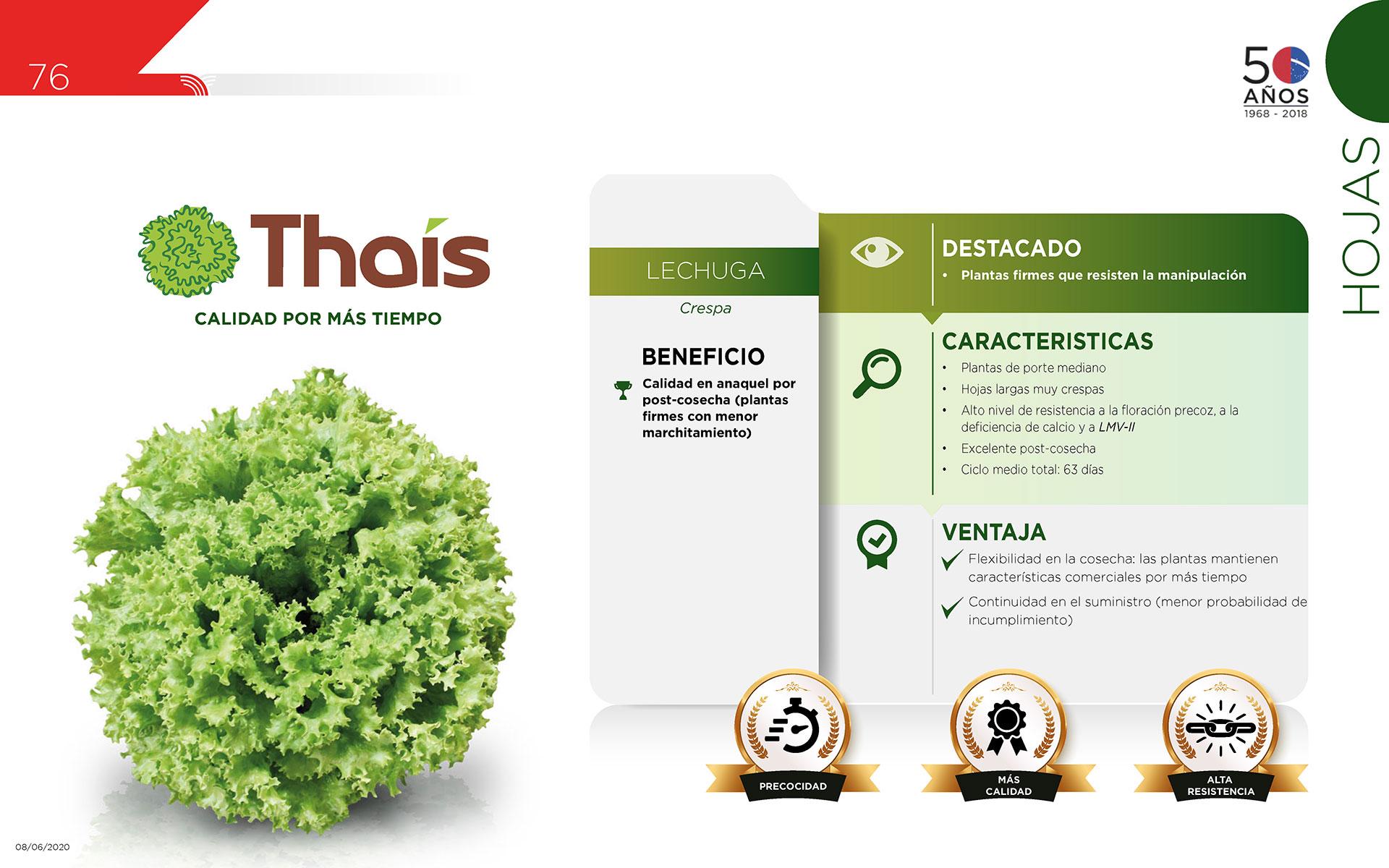 Thaís - Hojas