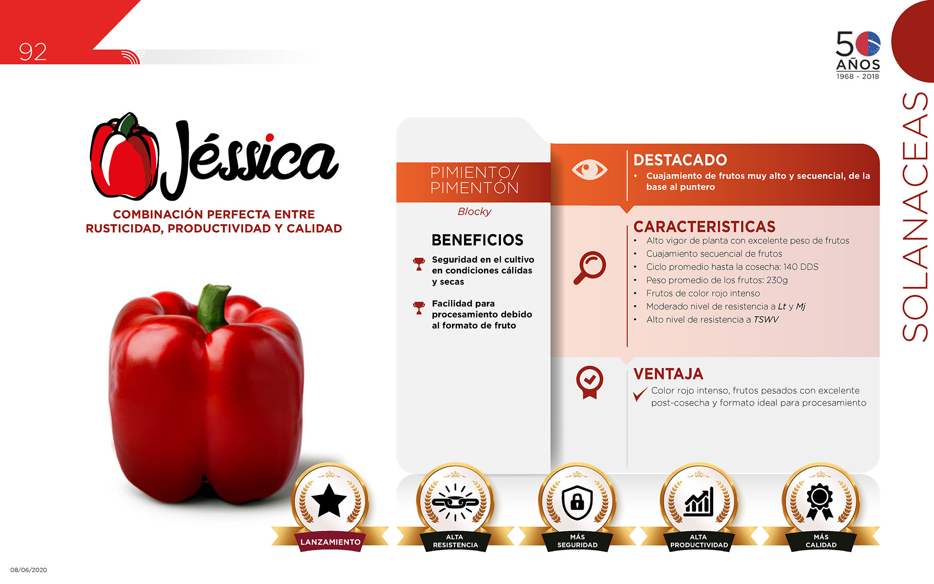 Jéssica - Solanaceas