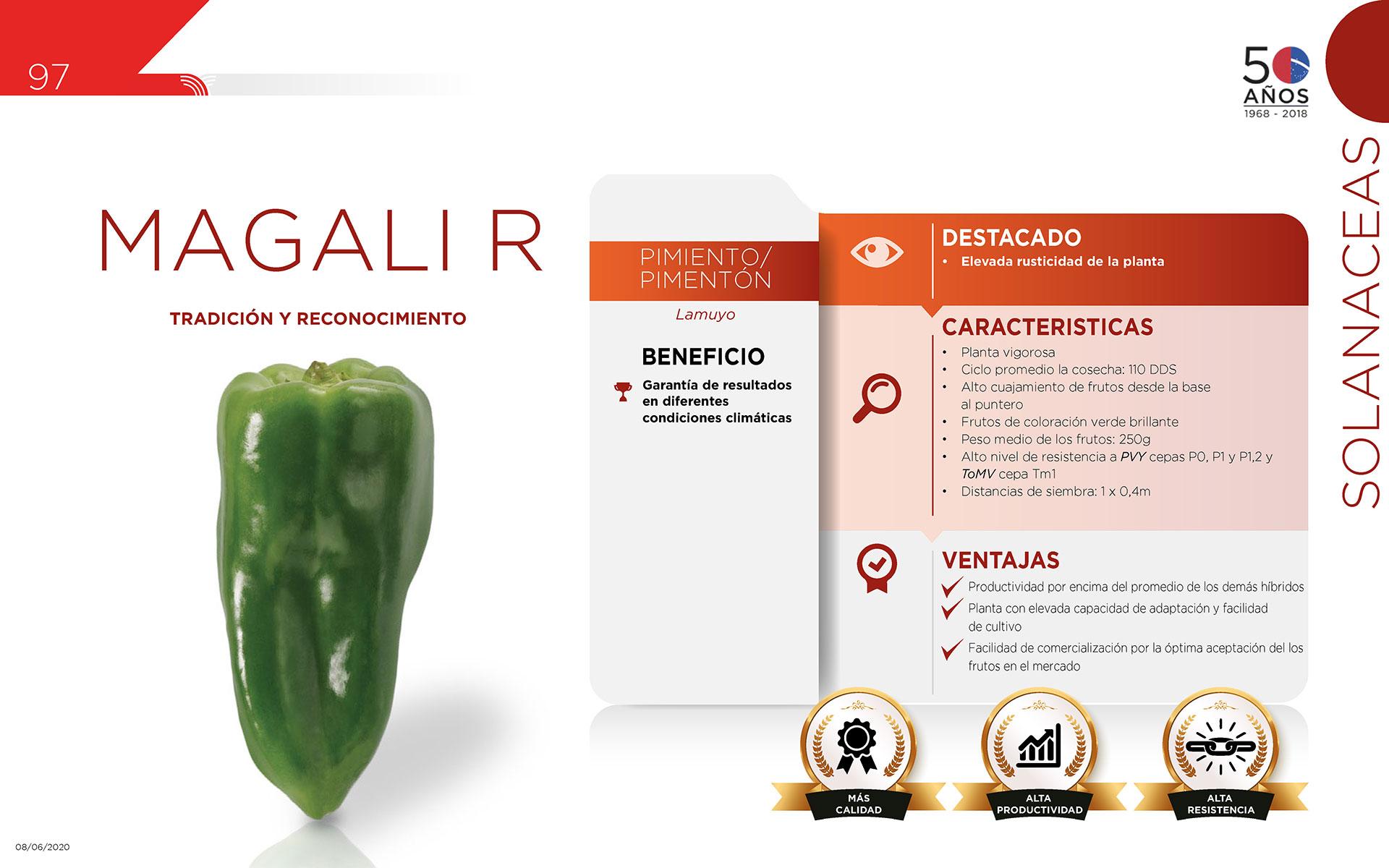 Magali R - Solanaceas