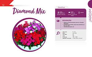 Diamond Mix - Jardim