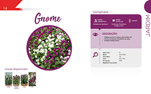 Gnome - Jardim