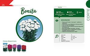 Bonita - Corte