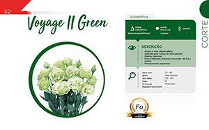 Voyage II Green - Corte