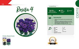 Rosita 4 - Corte