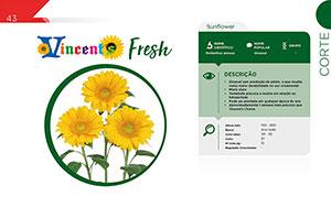 Vicent's Fresh - Vaso