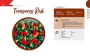 Treasures Red - Vaso
