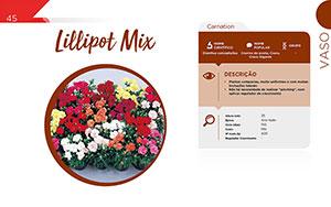 Lillipot Mix - Vaso