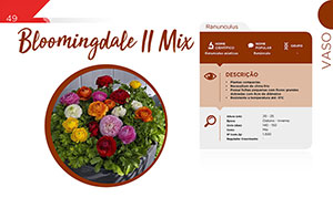 Bloomingdale II Mix - Vaso