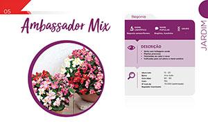Ambassador Mix - Jardim