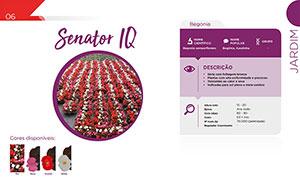Senator IQ DESCRIÇÃO - Jardim