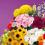Mercado de Flores e Ornamentais registra retomada de vendas após cinco meses de pandemia